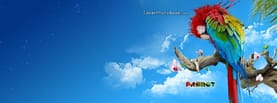 Colorful Paint Parrot on Tree Sky, Free Facebook Timeline Profile Cover, Animals