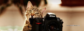 Cute Cat Taking a Photo, Free Facebook Timeline Profile Cover, Animals