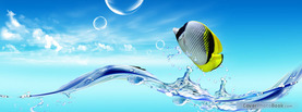 Fish and Water, Free Facebook Timeline Profile Cover, Animals