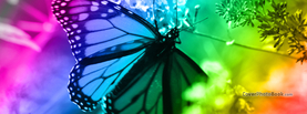 Rainbows and Butterfly, Free Facebook Timeline Profile Cover, Animals