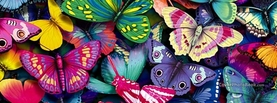Several Butterflies, Free Facebook Timeline Profile Cover, Animals