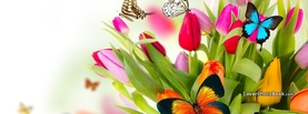 Spring Flowers Colorful Butterflies, Free Facebook Timeline Profile Cover, Animals
