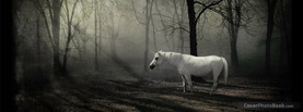 The Last Unicorn, Free Facebook Timeline Profile Cover, Animals