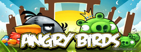 Angry Birds, Free Facebook Timeline Profile Cover, Brands