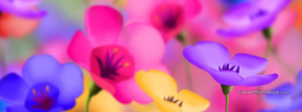 Colorful Flowers, Free Facebook Timeline Profile Cover, Creative