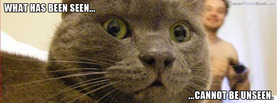 Cat Seen Cannot be Unseen, Free Facebook Timeline Profile Cover, Funny