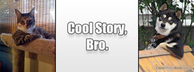Cool Story Bro Cat Dog, Free Facebook Timeline Profile Cover, Funny