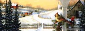 Bird Christmas, Free Facebook Timeline Profile Cover, Holidays