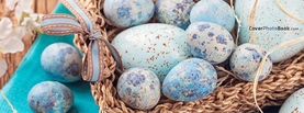 Blue Dinosaur Easter Eggs Basket, Free Facebook Timeline Profile Cover, Holidays