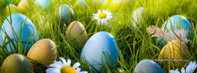 Blue White Gold Easter Eggs Grass Sunlight, Free Facebook Timeline Profile Cover, Holidays