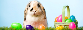 Cute Easter Bunny with Eggs Basket, Free Facebook Timeline Profile Cover, Holidays