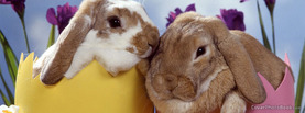Easter Bunnies in Eggs, Free Facebook Timeline Profile Cover, Holidays