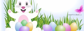 Easter Bunny Eggs Grass Butterfly Illustration, Free Facebook Timeline Profile Cover, Holidays