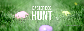 Easter Egg Hunt Grass, Free Facebook Timeline Profile Cover, Holidays