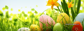 Easter Eggs in Grass Yellow Flowers, Free Facebook Timeline Profile Cover, Holidays