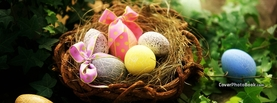 Easter Eggs in Nest Bows, Free Facebook Timeline Profile Cover, Holidays
