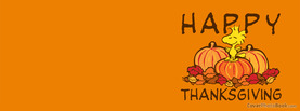 Happy Thanksgiving Peanuts Snoopy Cartoon, Free Facebook Timeline Profile Cover, Holidays