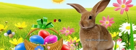 Rabbit Easter Egg Hunt Grass Sun, Free Facebook Timeline Profile Cover, Holidays