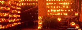 Thousands of Halloween Pumpkins, Free Facebook Timeline Profile Cover, Strange