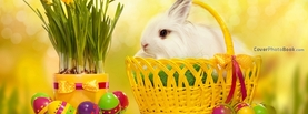 White Easter Bunny in Basket Eggs, Free Facebook Timeline Profile Cover, Holidays