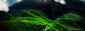 Beautiful Plantation Hills, Free Facebook Timeline Profile Cover, Nature