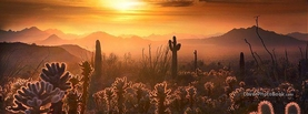 Dusty Desert Sunset Cactus, Free Facebook Timeline Profile Cover, Nature