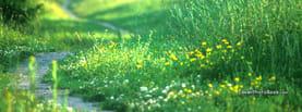Grass Green Path Focus Blur, Free Facebook Timeline Profile Cover, Nature
