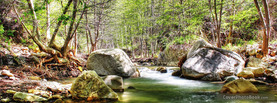 Lovely Forrest River, Free Facebook Timeline Profile Cover, Nature