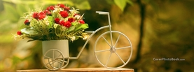 Miniature Bicycle Spring Flowers, Free Facebook Timeline Profile Cover, Nature