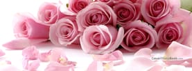 Speactacular Pink Rose Bunch with Petals, Free Facebook Timeline Profile Cover, Nature