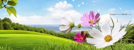 Spring Landscape Flowers Wind, Free Facebook Timeline Profile Cover, Nature