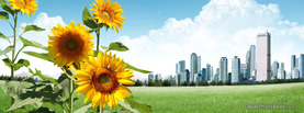 Sunflower City, Free Facebook Timeline Profile Cover, Nature