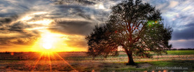 Sunrise Landscape Tree, Free Facebook Timeline Profile Cover, Nature