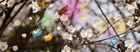 Welcome Spring Twitter Birds, Free Facebook Timeline Profile Cover, Nature