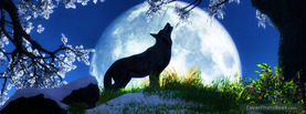 Wolf Howl Full Moon, Free Facebook Timeline Profile Cover, Nature