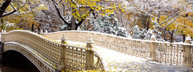 Early Snowfall Central Park, Free Facebook Timeline Profile Cover, Places