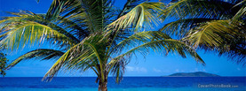 Palm Trees Sea, Free Facebook Timeline Profile Cover, Places