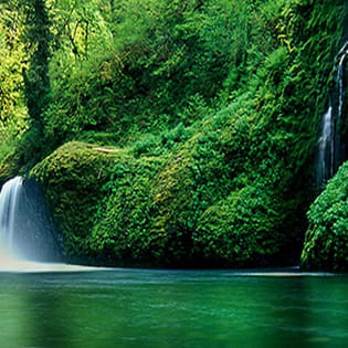 Nice Nature River Waterfall Facebook Cover - Nature | 315 x 315 jpeg 40kB